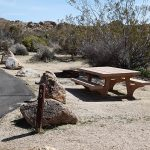 Joshua Tree National Park Campgrounds